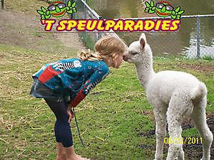't Speulparadies Beerta