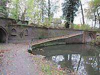 Sterrenbos Winschoten