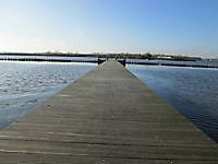 Vogeleiland de Kikkerberg Midwolda